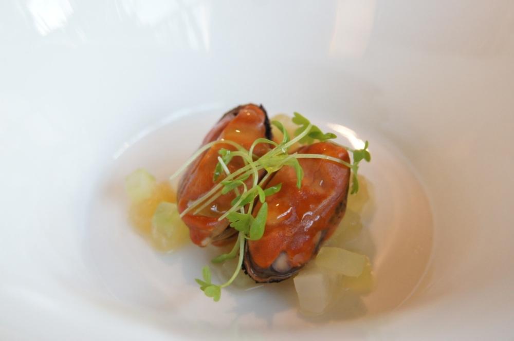 Blueshell mussel