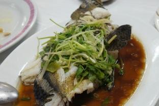 Steamed Soon Hock Fish 廣東蒸筍殼魚