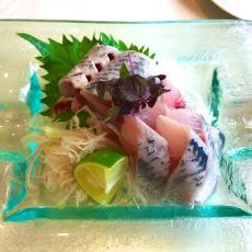 Sardine sashimi