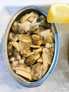 White clams