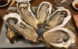 Fresh hokkaido oysters