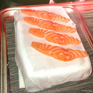 "Salmon ""frozen"" on ice"