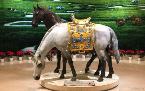 草原馬 full size horses