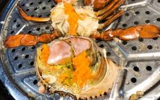 Female roe mud crab