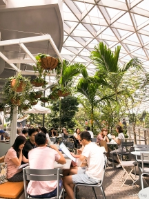 Dining under the canopy