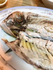 凍烏魚 Chilled grey mullet