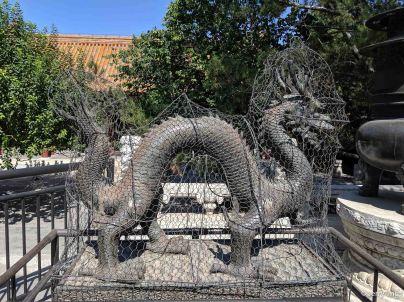 Bronze dragon