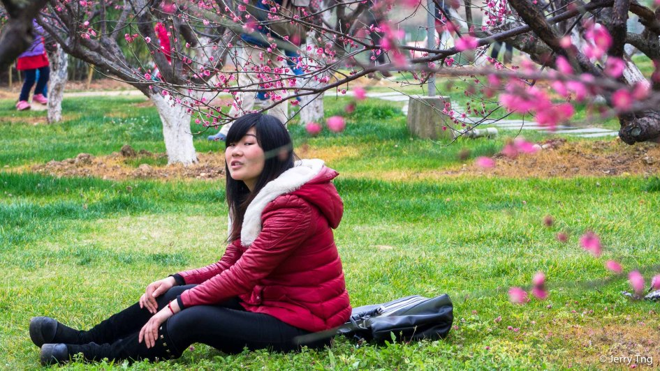 A young girl under the plum blossom - 桃花 also signifies romance