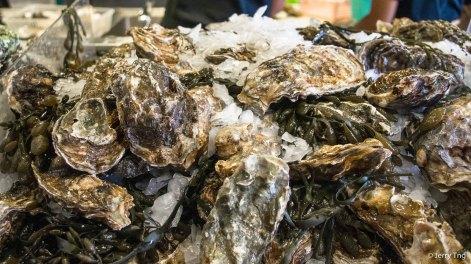 Gillardeau oysters