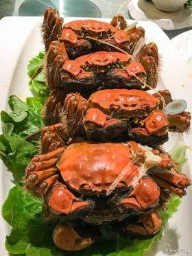 清蒸大闸蟹 Steamed hairy crabs