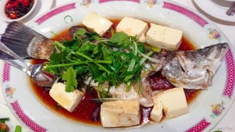 Steamed mullet HK-style 港蒸烏魚